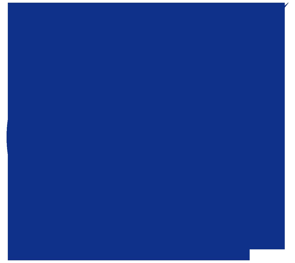 ウェブライダーロゴ